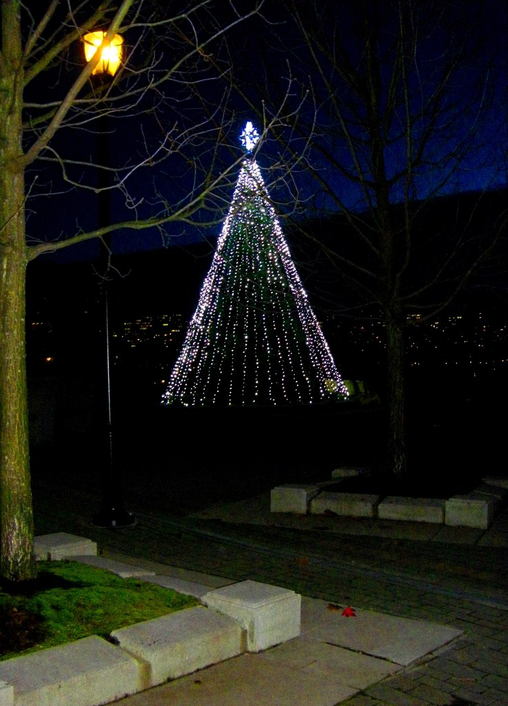 The Christmas Tree and the Maple Leaf (just below on pavement) at Wainborn Park Yaletown Vancouver. A chilly windy night but still holding above freezing, there's snow in the air, and the next morning thick on the mountains!